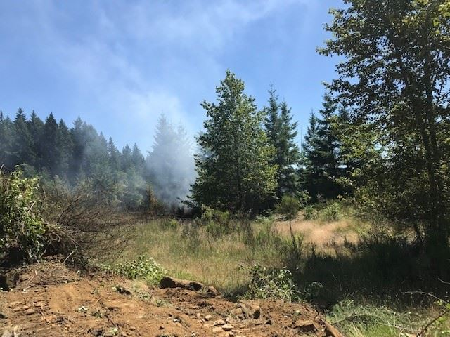 Tualatin Brush Fire